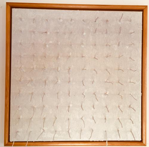 Structures bianco-2 (2009, 40x40, gesso:rope:mixed materials on canvas)